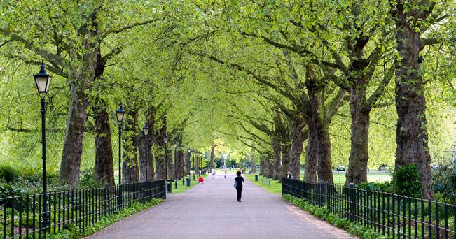 Battersea Park è il più grande parco lungofiume in piena Londra (foto Alex Segre/Alamy/Milestone Media)